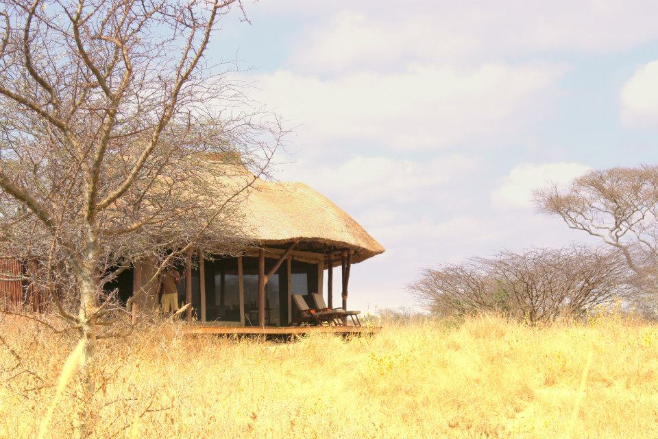 Zelt, Little Oliver's Camp, Tarangire Nationalpark, Tansania Reise