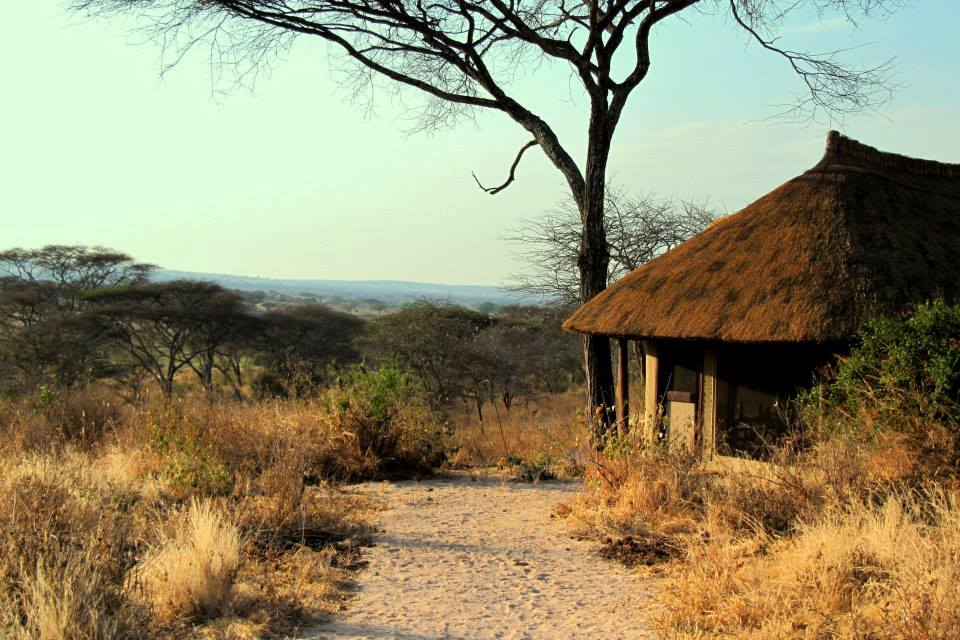 Bungalow, Little Oliver's Camp, Tarangire Nationalpark, Tansania Reise