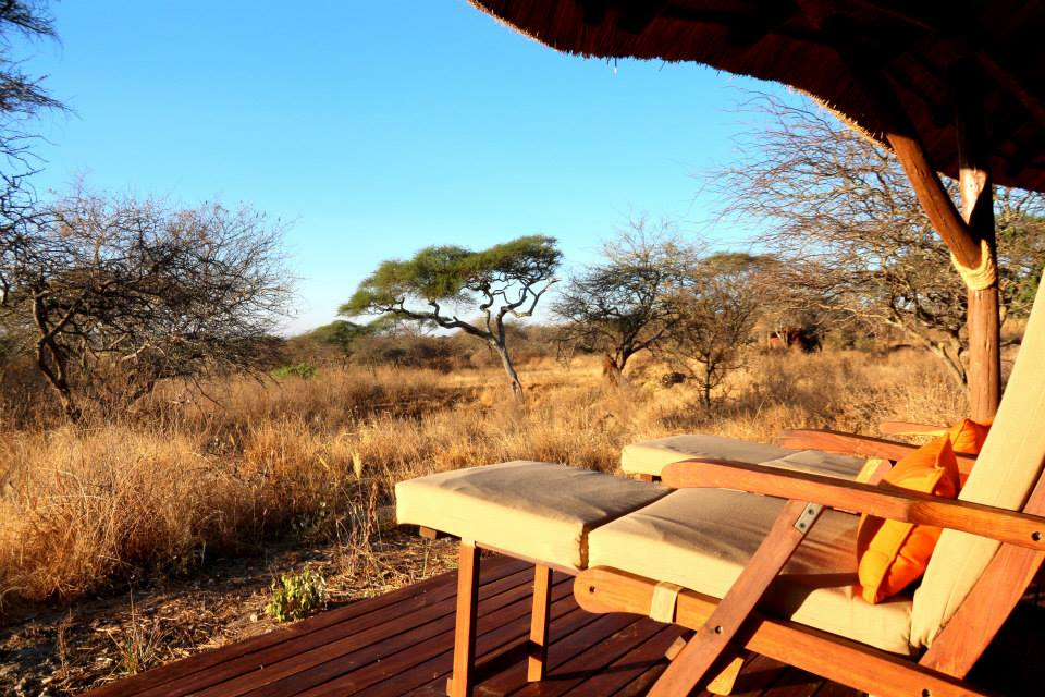 Ausblick, Little Oliver's Camp, Tarangire Nationalpark, Tansania Reise